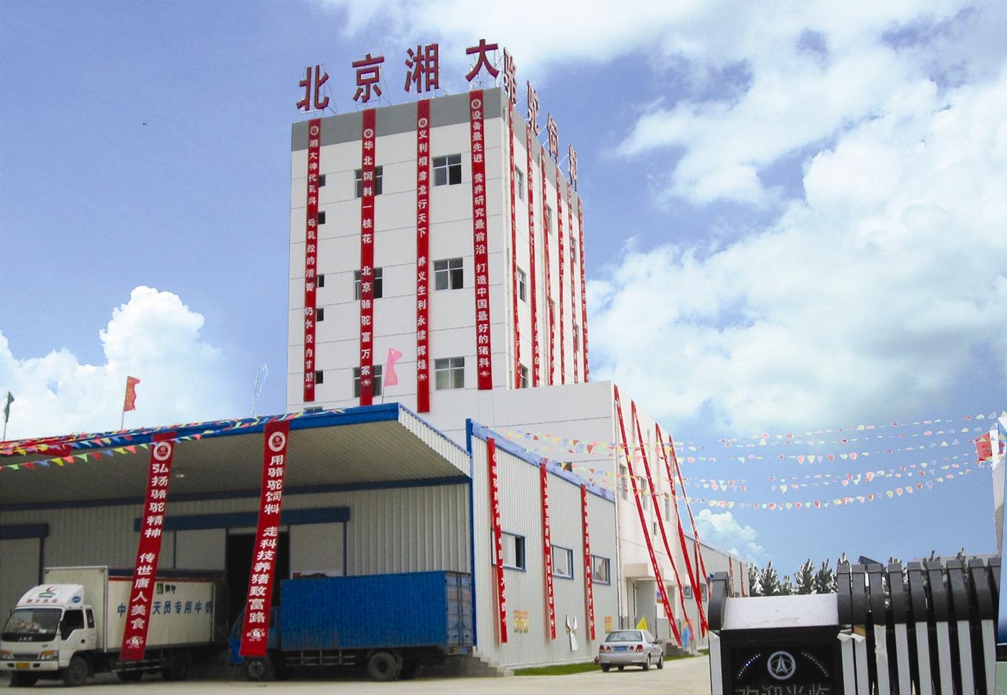 高档乳猪贝斯特全球奢华老虎机生产线