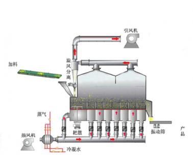 生物贝斯特全球奢华老虎机干燥机多室流化床干燥机